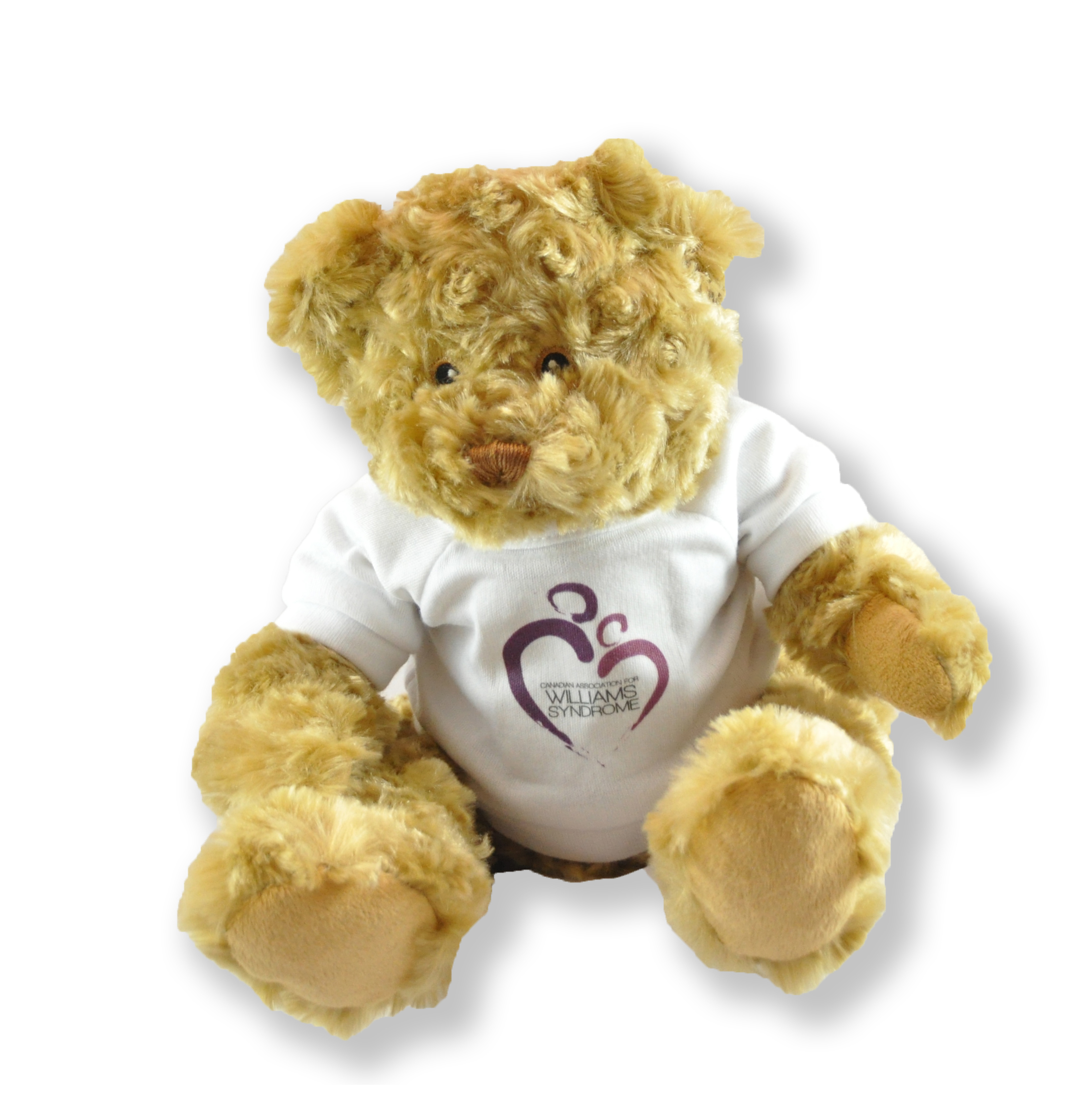 williamssyndrome.ca// CAWS teddy bear